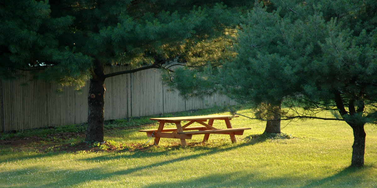 Summer picnic at Kent Green in Kent, CT