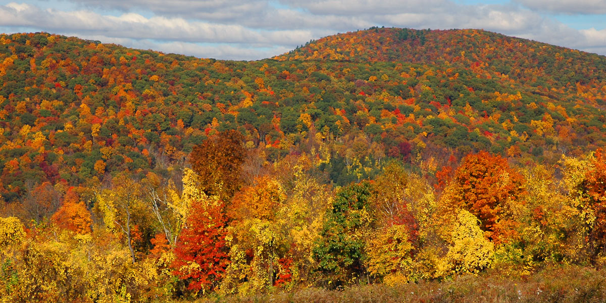 Autumn in Kent, Connecticut